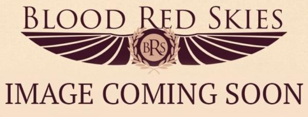 Blood Red Skies_Bild folgt.JPG
