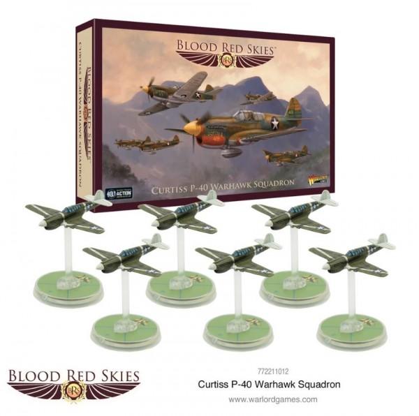 Curtiss P40 Warhawk Squadron1.JPG