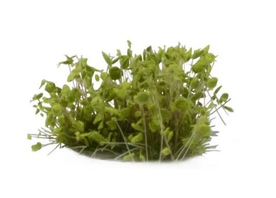 green-shrub-tufts.jpg