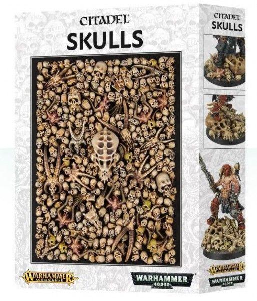 citadel skulls.JPG